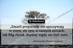 Zmarli przyjaciele nie spoczywają w ziemi, ale... #Dumas-Aleksander,  #Przyjaźń, #Relacje-międzyludzkie, #Wspomnienia-i-pamięć True Quotes, Motivational Quotes, Humor, Motto, Poetry, Beautiful, Friends, Motivating Quotes, Humour