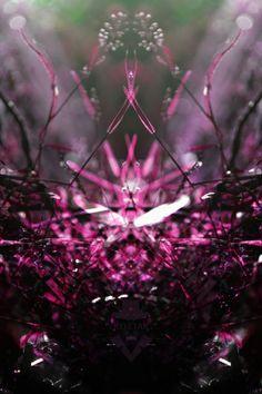 pink micro forest ground close up rorschach symmetry Art Print by KoZtar Rorschach Test, Symmetry Art, Pink, Purple, Cg Art, Stretched Canvas, Mauve, Close Up, Illusions