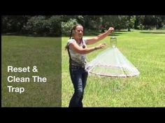Have you ever been run out of your yard or your pool because horseflies or deer flies were out of control? You can buy biting fly traps on line for hundreds . Animals And Their Homes, Animals And Pets, Horsefly Trap, Homemade Fly Traps, Farm Hacks, Bait Trap, Glue Traps, Bug Off, Horse Fly