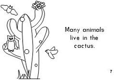 Make a book about the life cycle of the cactus. Cactus Hotel