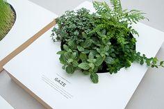 TAKE A GREEN BREAK: Poster by Sok Hwee, via Behance