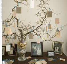 Something Old and New, Borrowed and... GREEN!: The Wishing Tree