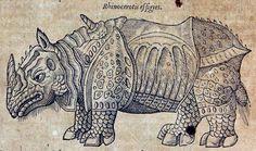 The rhinoceros of Dürer in Ambroise Paré