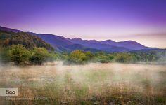 Carpathian mist by paraschivdragosh  blue carpathians clouds forest green mist mountains romania sky summer sunrise travel trees Carpathi