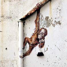 #funny#streetart#art#graffiti#wallart#streetwear#crazyart#paint#grafite#streetview#graffiteros#grafiteiro#grafiteiros#streetstyle#mural#collage#streetartist#streetartt#urbanart#art#artist#instaart#picoftheday #monkey #monk