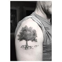 Oak tree for the eldest @stephenmoyer