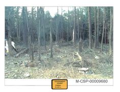 Photograph of debris found at the scene in Somerset County, Pennsylvania, where Flight 93 crashed. We Will Never Forget, Lest We Forget, Flight 93 Crash Site, Flight 93 Memorial, Remembering September 11th, Creepy History, Pennsylvania History, Bodies, American Presidents