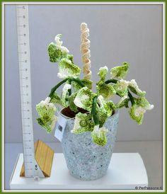 Edera variegata in vaso #edera #foglie #piante #leaves #plants #crochet
