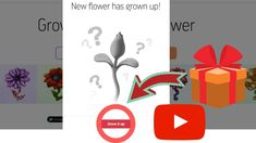Cryptoflowers : Reveal new flower in your garden. Game based on ethereum...