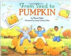 From Seeds to Pumpkin