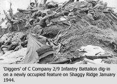 Australian diggers dig-in on Shaggy Ridge 1943