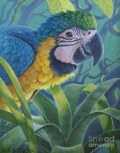 """susan a walton"" artist 