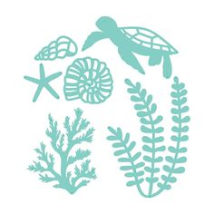 Create an Underwater Scene with these Decorative Dies from Kaisercraft. There are 6 thin metal dies included that measure x to x The dies are compatible with most die cutting machines (sold separately) and include shells, a turtle and algae. Flowers In Jars, Paper Flowers, Stencil Templates, Stencil Designs, Frantic Stamper, Arts And Crafts, Paper Crafts, Flower Svg, Paper Cutting