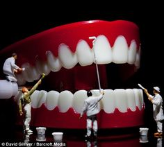 Surreal scenarios by macro photographer David Gilliver. The Guernsey-based finance worker, who began producing the little people series at the tail end of uses a DSLR camera and a macro lens to capture his unique snapshots of life in Smallville. Dental Photography, Photography Degree, Photography Challenge, Artistic Photography, Creative Photography, Amazing Photography, Diorama, Dental Images, Macro Photographers