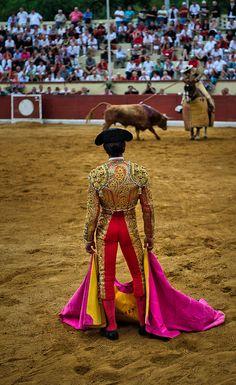 el matador. bulls. so easily roused.