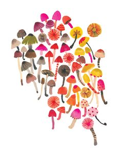 PRINTS :: Funghi Wall Print - Vertical - Ecojot - eco savvy paper products