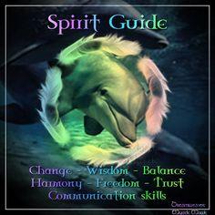 dolphin as a spirit guide