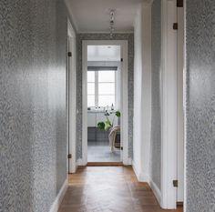 Wallpapers, Windows, Wallpaper, Backgrounds, Ramen, Window