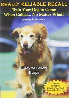Useful Dog Obedience Training Tips – Dog Training Training Your Puppy, Dog Training Tips, Potty Training, Training Schedule, Crate Training, Dog Agility Training, Off Leash Dog Training, Husky Training, Dog Training Come