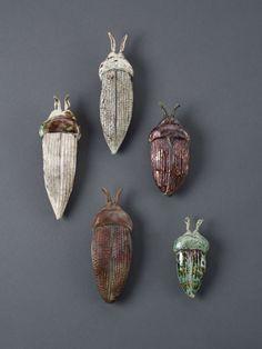 beetles art holly de Saillan - Google Search