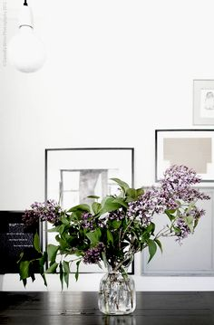Simple. Pure. Purple. Glass Green Plants, Green Flowers, Beautiful Space, Beautiful Flowers, Flower Power, Home And Deco, Bath Decor, Land Scape, Interior Inspiration