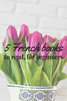 5 French Books to read for beginners – Selfrench