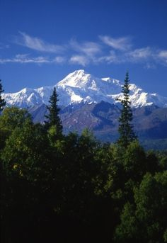 Mt. Mckinley, Alaska...can't believe how fortunate I have been to see this amazing wonder. I've seen it on a majority of the trips I've been on to Alaska (which is 9).