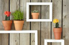 Ever thought about using shadow boxes to dress up a wood fence? They're incredibly easy to make, or buy them already made and paint to match your decor. Secure to fence and use to hold small potted plants or whatever strikes your fancy! via Home Made Simple.