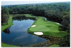 Celebration Golf Course - Orlando Florida: This course and others like it are… Florida Golf Courses, Celebration Florida, Vacation Packages, Orlando Florida, Vacation Destinations, Golf Clubs, Tours, Golf Travel, Celebrities