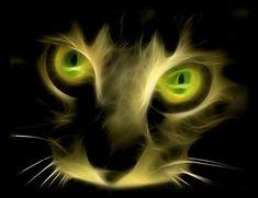 フラクタル猫-10