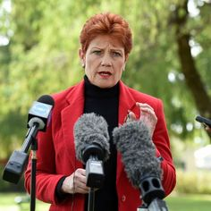 Pauline Hanson's One Nation Party has copied slabs of text from the internet for some of its policies — including from Wikipedia.
