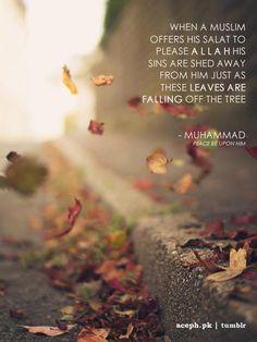 Subhanallah Islam is beautiful...Alhamdulillah