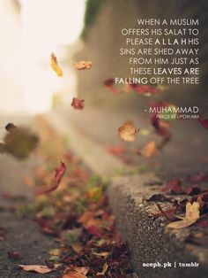 Subhanallah  Islam is beautiful...Alhamdulillah
