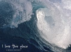 Incredible momentary beauty of a wave