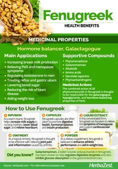 Fenugreek is generally consumed as a culinary herb, but it also provides medicinal and nutritional benefits, from enhancing sexual function in men an women to improve lactation and blood sugar. Keep reading to learn more about the benefits of fenugreek. Natural Health Remedies, Herbal Remedies, Health And Nutrition, Health And Wellness, Fenugreek Benefits, Herbs For Health, Healing Herbs, Back To Nature, Herbal Medicine