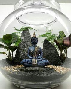 The most beautiful terrariums differ from each other Miniature Zen Garden, Mini Zen Garden, Terrarium Plants, Succulent Terrarium, House Plants Decor, Plant Decor, Mini Jardin Zen, Deco Zen, Indoor Water Garden