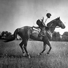 Never has a groom been so completely beloved by his charge. Never has a groom meant so much to his horse. Never has there been another Man o' War and Will Harbut. Harbut greeted each                 Keep Reading