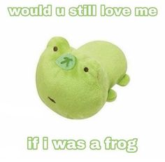 Stupid Funny Memes, Funny Relatable Memes, Haha Funny, Funny Stuff, Whatsapp Text, Frog Pictures, Response Memes, Frog And Toad, Frog Frog