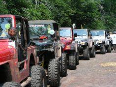 Jeeps<3