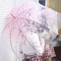 This is long handle and transparent cherry blossom umbrella. With cherry blossom pattern, makes the