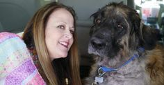 Family dog allegedly spared from euthanasia and kept for secret blood transfusions