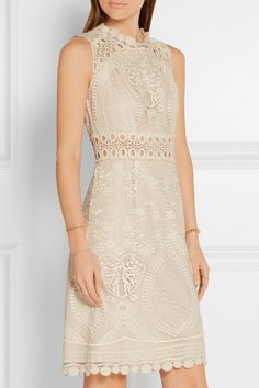 Anna Sui   Crochet-trimmed embroidered tulle mini dress   NET-A-PORTER.COM