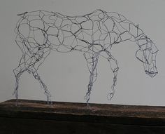 Wire Horse  Diane L. Wright