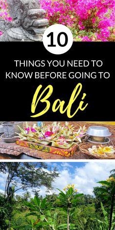 10 Things You Should Know Before Traveling to Bali | Bali Tips | Bali Travel Tips | Bali Trip