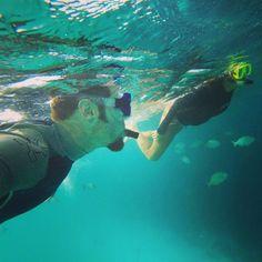My favorite secret spot on Bonaire Vacation Apartments, Luxury Accommodation, Windsurfing, Car Rental, Beach Resorts, Snorkeling, Budget Travel, Diving, Caribbean