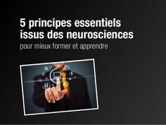 5 principes essentiels issus des neurosciences pour mieux former et apprendre.