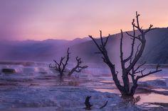Yellowstone Dawn by Ron Coscorrosa, via 500px