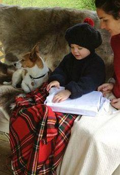 A Natale non importa cosa trovi sotto l'albero, MA CHI TROVI INTORNO. Stephen Littleword.