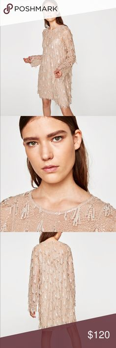 """ZARA PALE BLUSH PINK SEQUIN FRINGE DRESS Brand new with tags. Zara size small.   Blush pale pink sequin dress with additional sequin """"fringe"""" hanging off the dress. So pretty and so chic! Zara Dresses"""