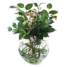 Stunning large greenery bowl that will remain beautifully green throughout the seasons! Decorative Items, Decorative Accessories, Boutique Homes, Luxury Interior Design, Home Staging, Greenery, Glass Vase, Floral Decorations, Christmas Interiors